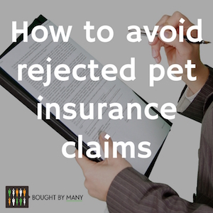 9 ways to make sure pet insurance claims are never refused ...